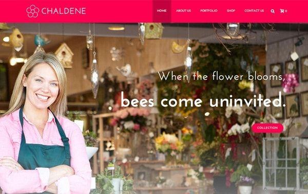 jupiter-wordpress-theme-business-website-templates-business-wordpress-theme-chaldene